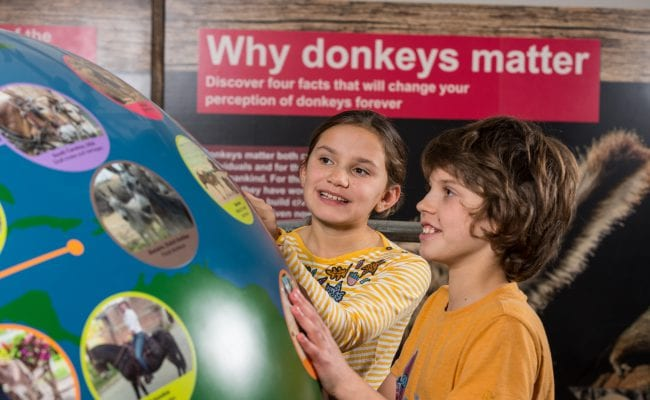 Children enjoy learning about donkeys around the world in the new Exhibition Barn