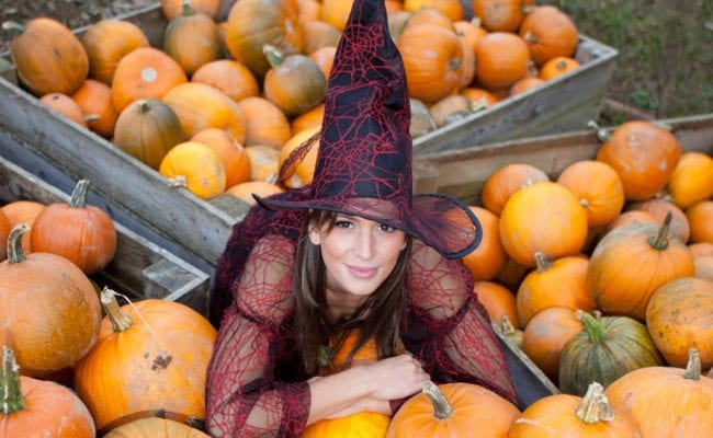 Witch in amongst the pumpkins at Big Sheep