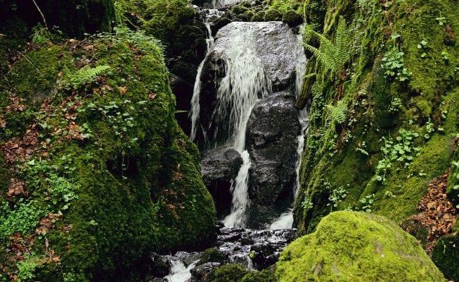 Canonteign Falls Devon