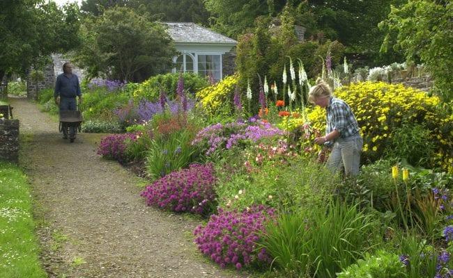 Clovelly Court Victorian kitchen gardens