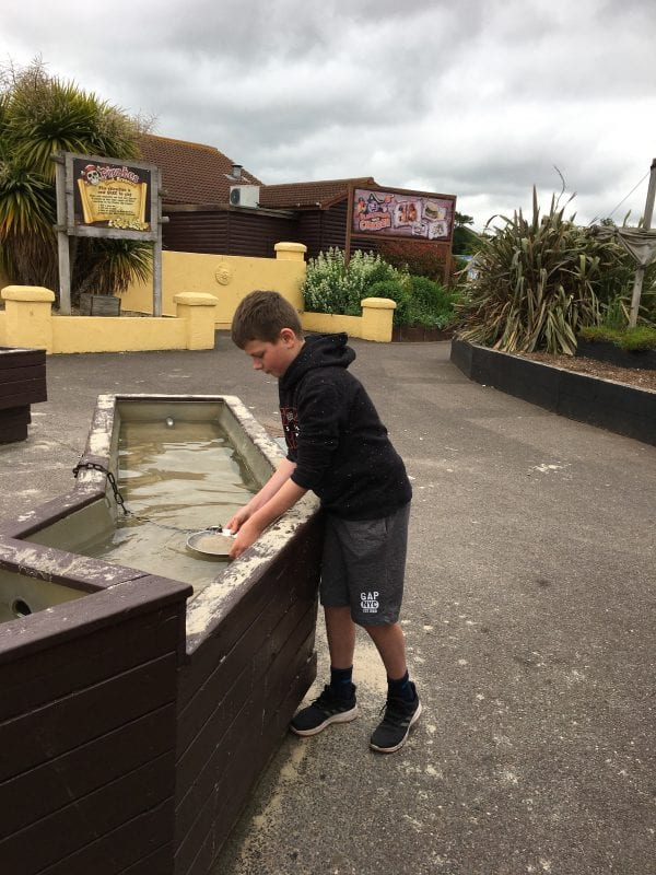 Crealy panning for gold - Devon's Top Attractions