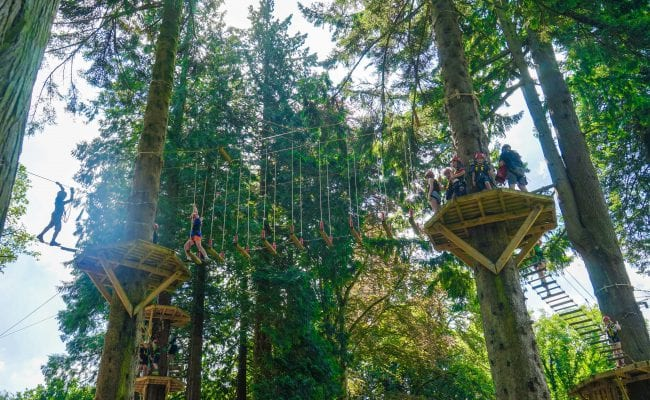 High Ropes