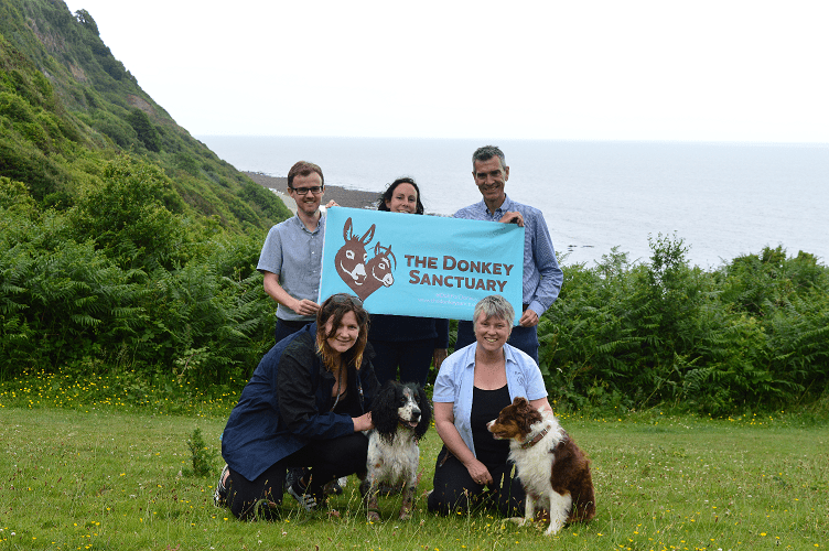 donkey sanctuary take on the swcp challenge