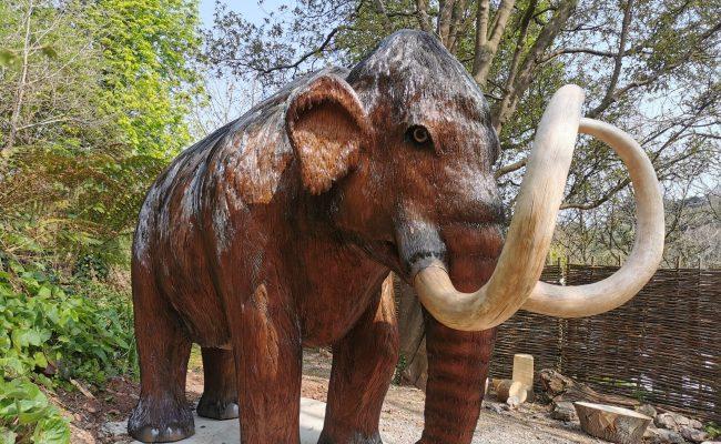 Kents Cavern's new life size Mammoth