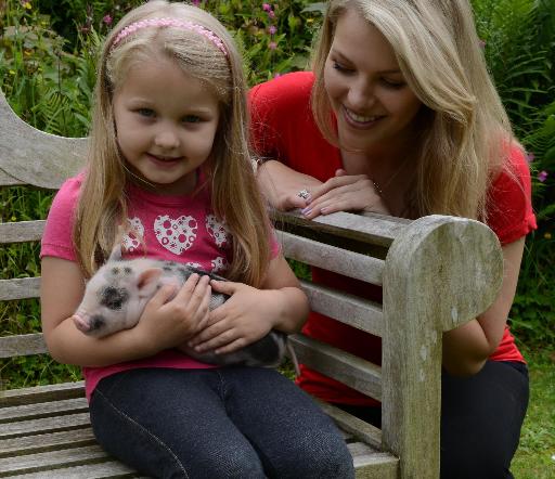 piggy cuddles at Pennywell Farm