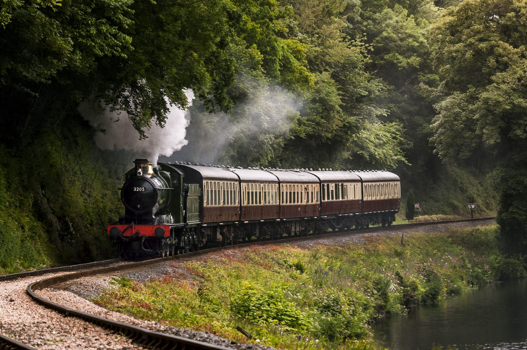 Train travelling on track on South Devon Railway