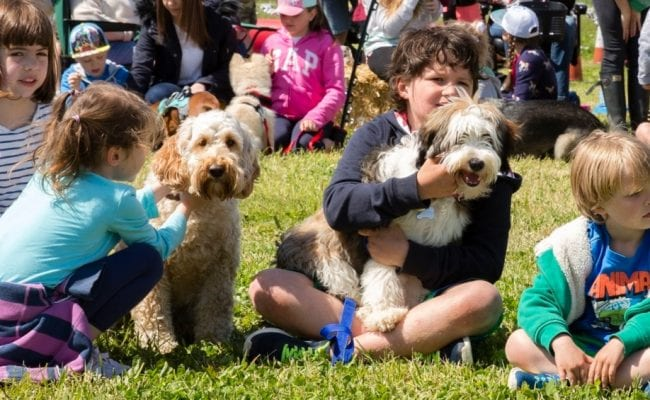 Children show off their dogs at the Spring Family Fun Day & Dog Show