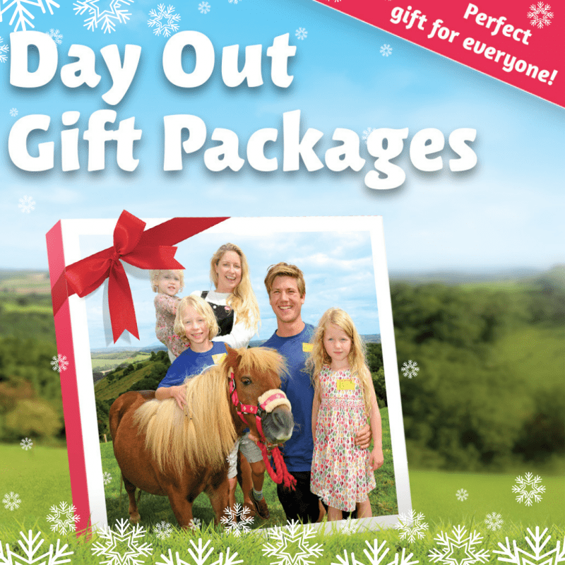 Pennywell day out and gift packages