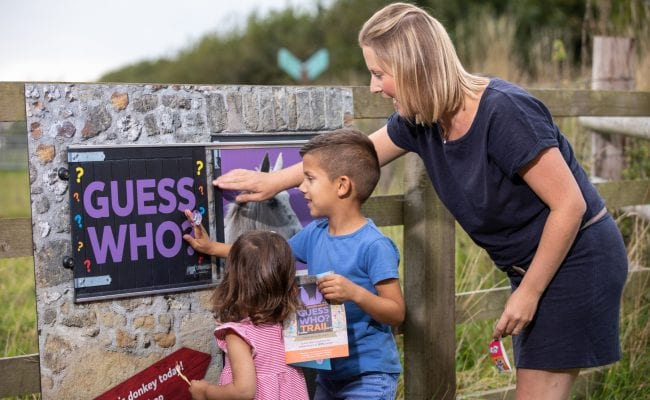 Family enjoys entertaining activity trail around The Donkey Sanctuary