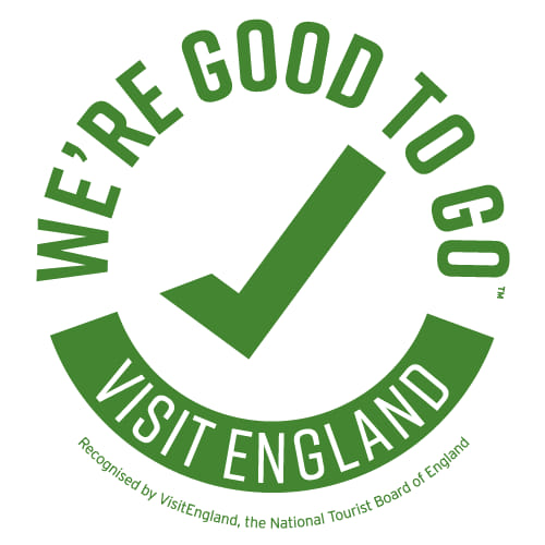 VE We're Good to Go logo