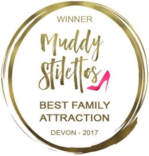 Devon award
