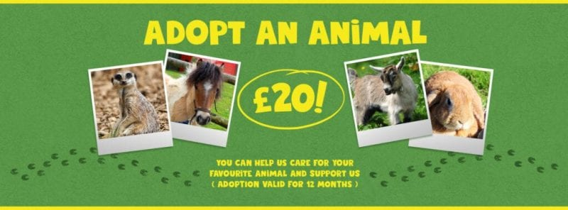 Woodlands Family Theme Park Adopt and animal