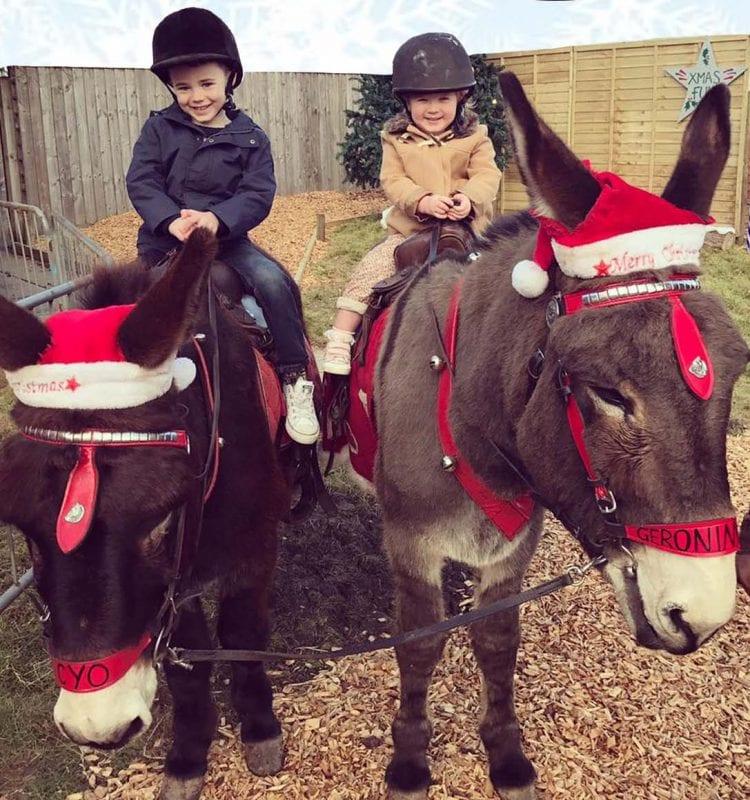 Santa by donkey at Quince Honey Farm in Devon